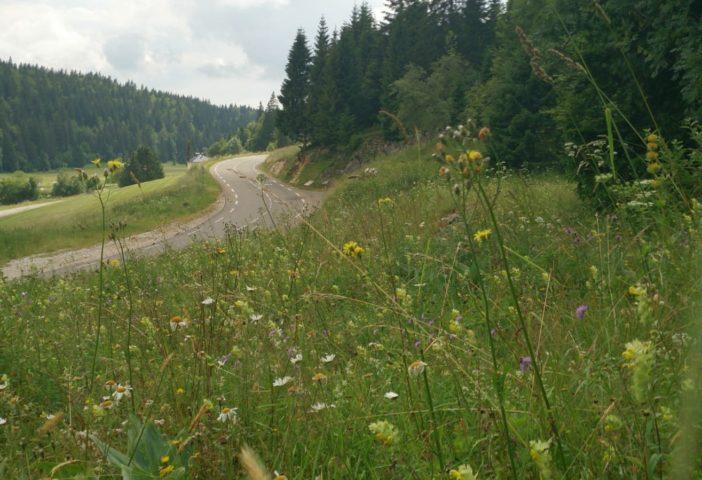 Route du Lac